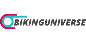 bikinguniverse logo